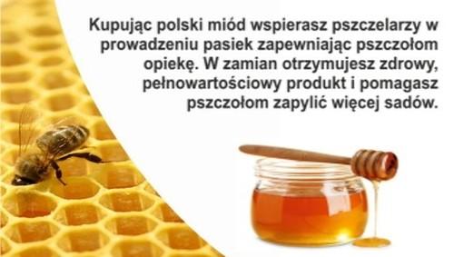 Kupując polski miód wspierasz rodzimych pszczelarzy